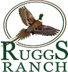 Ruggs Ranch Logo
